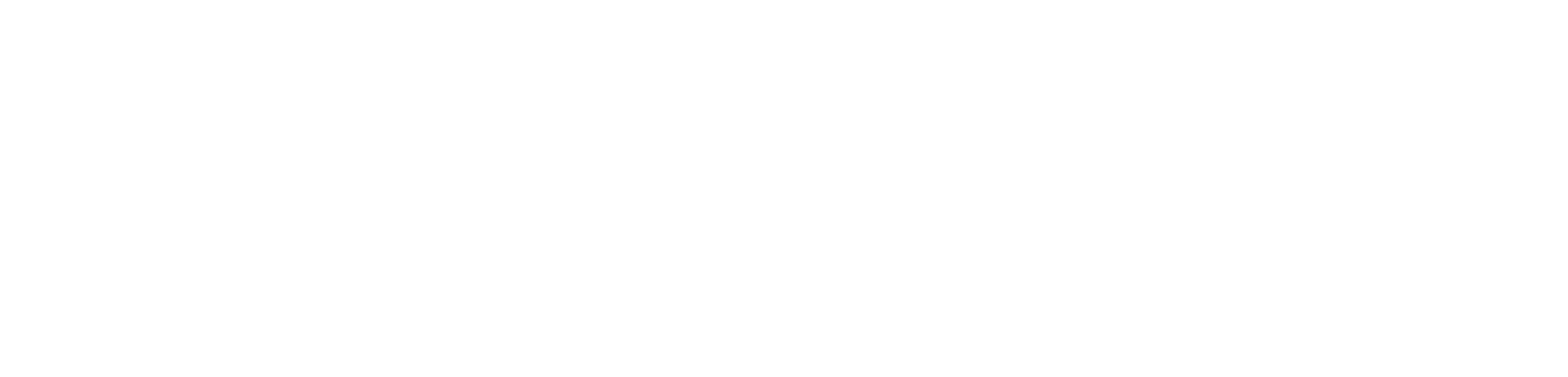 en - audio consulting group